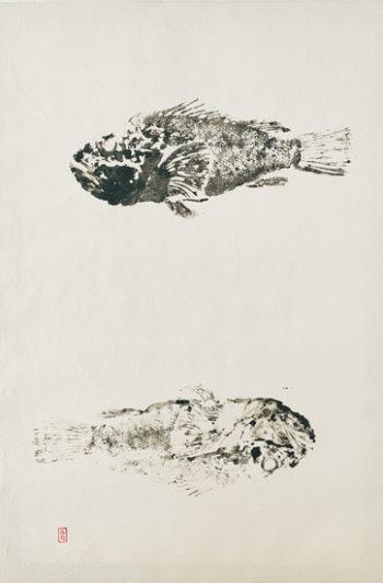 Gyotaku Rascassa