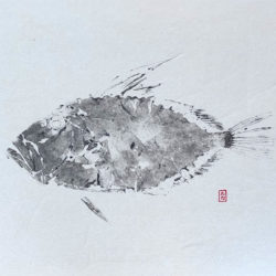 gyotaku gallo