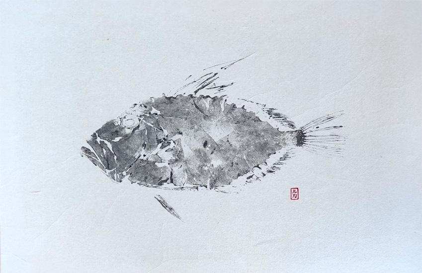 gyotaku gallo